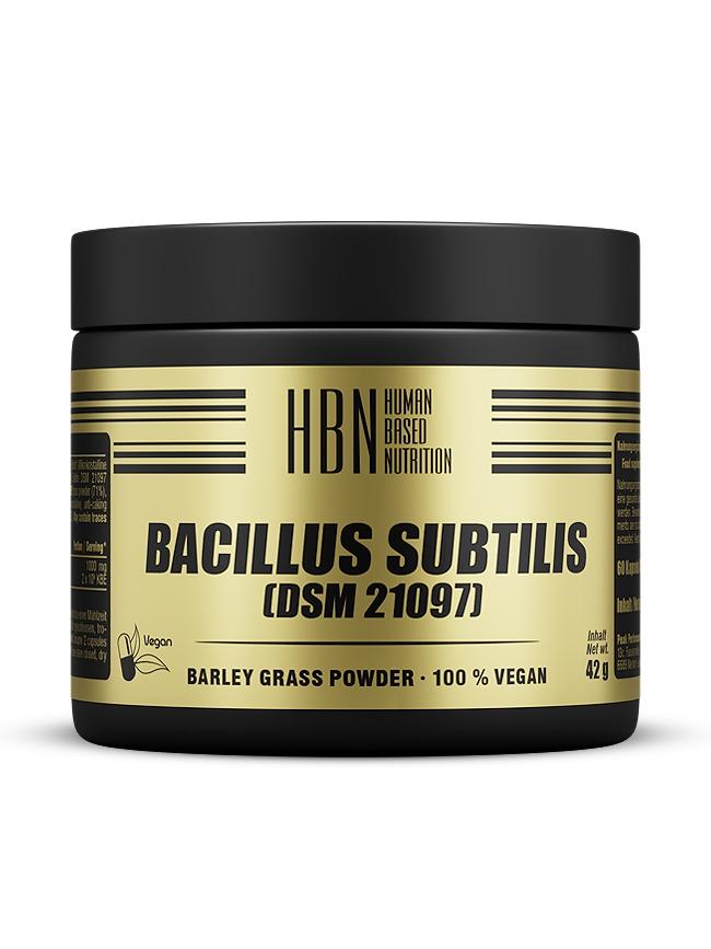 HBN - Bacillus Subtilis (DSM 21097) - 60 Kapseln